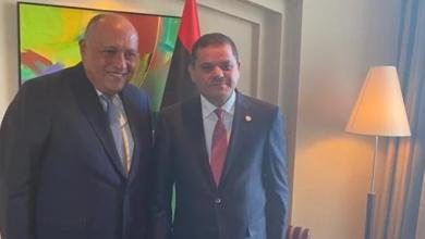 شكري يؤكد: مصر حريصة على دعم الشقيقة ليبيا